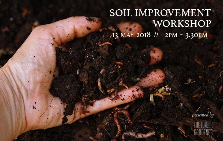 soil gardening singapore