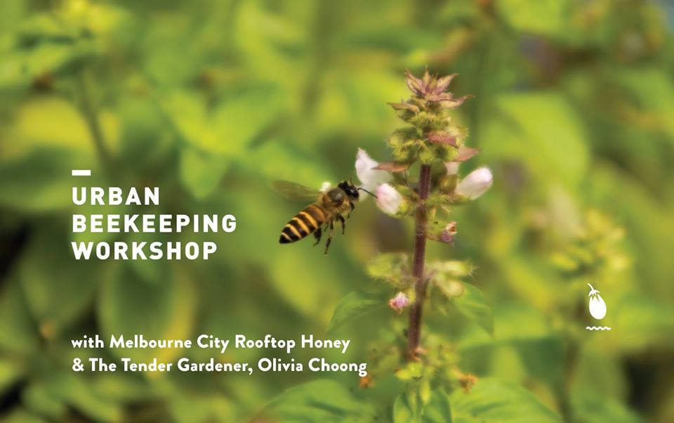 urban beekeeping workshop singapore