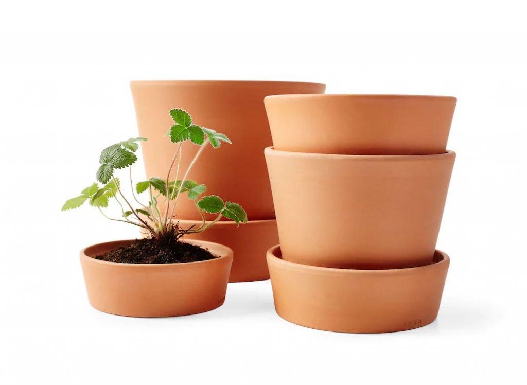 terracotta pots singapore