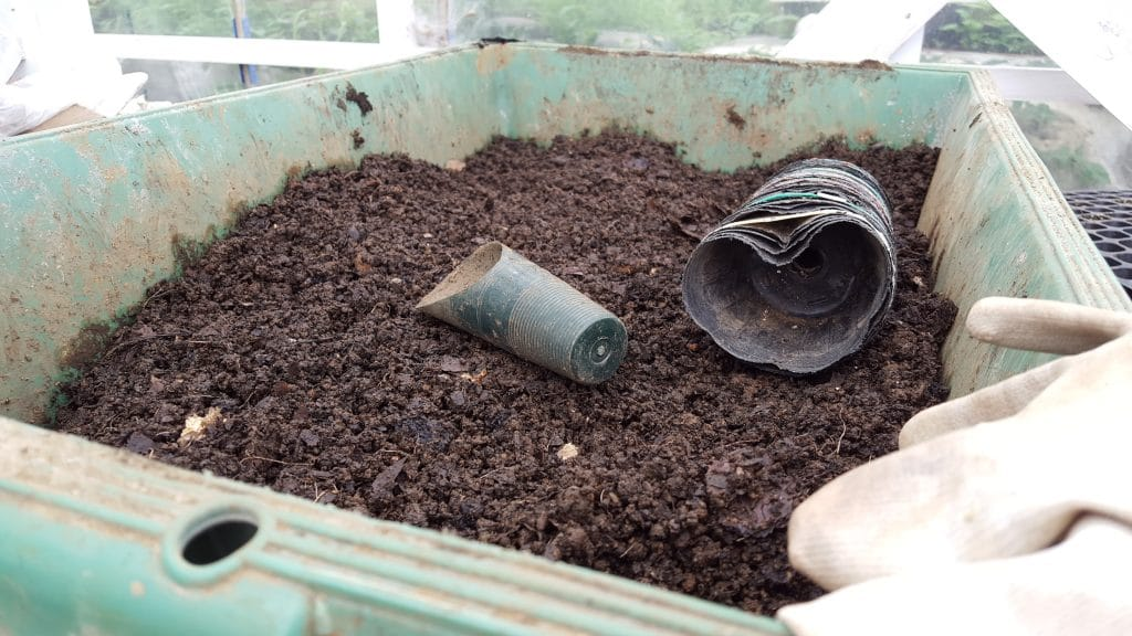 Soil to grow vegetables in singapore