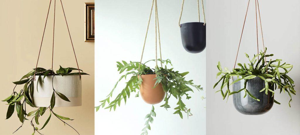 ceramic hanging planters Singapore