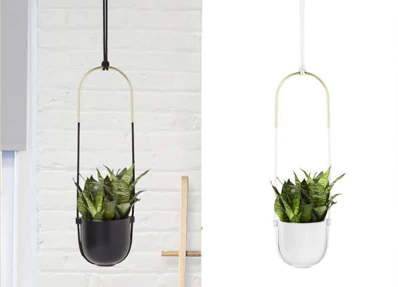 stylish plant hanger Singapore