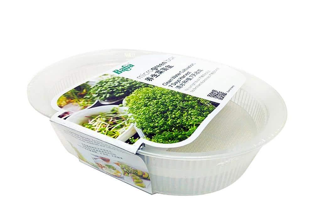 microgreens kit singapore